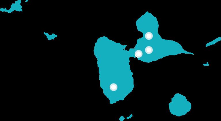 Le conseil en évolution professionnelle en Guadeloupe